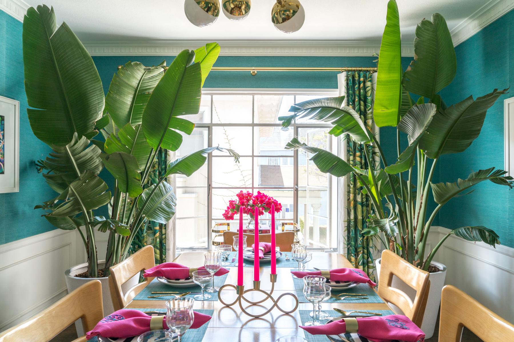 13 Best Large Foliage Houseplants | Indoor Plants With Big ...